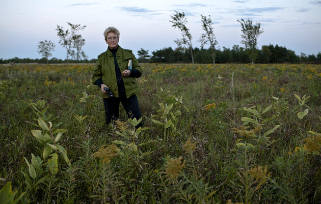 Working Lands: A New York Farm Owner Manages Fields For Grassland Birds