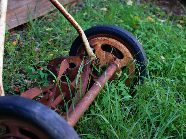 Is Your Yard Super Gassy?
