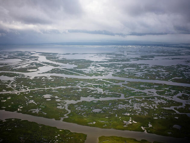 Saving Louisiana