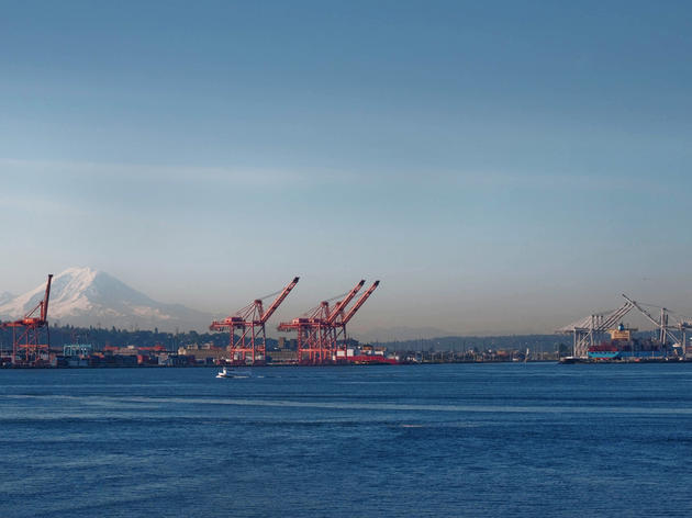 The Shell Lease at the Port of Seattle Is Bad News for Birds