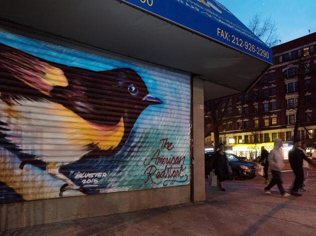The Audubon Mural Project