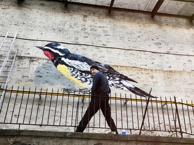 Artist ATM in front of his Williamson's Sapsucker mural on 663 West 158 St. in New York City. Mike Fernandez/Audubon