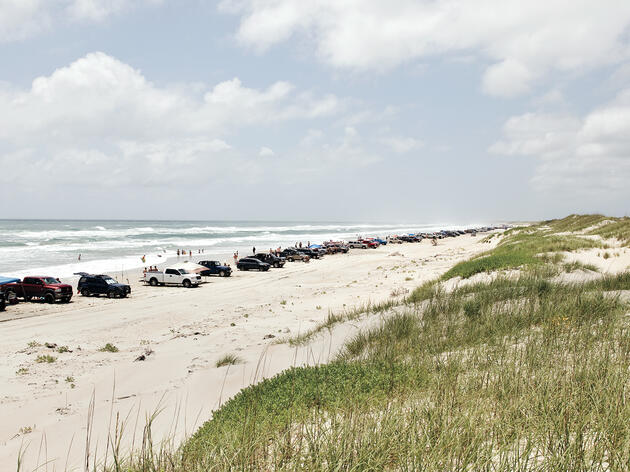 Wildlife Advocates Score a Win at Cape Hatteras