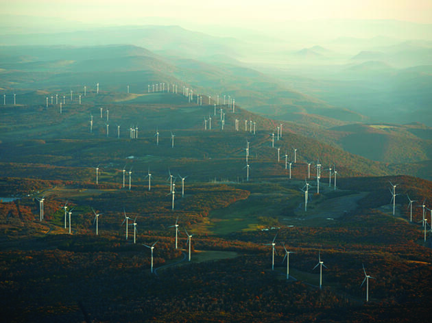 Putting Wind Turbines Out of Wildlife's Way