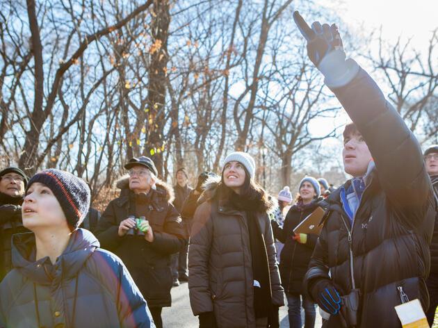 Christmas Bird Count 2015, Central Park, NYC. Camilla Cerea/Audubon
