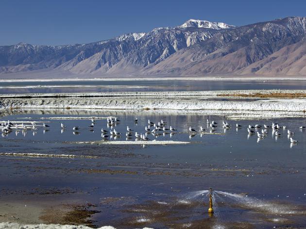 Owens Lake, near Keeler, California. Credit: Jim West/ImageBROKER/Corbis