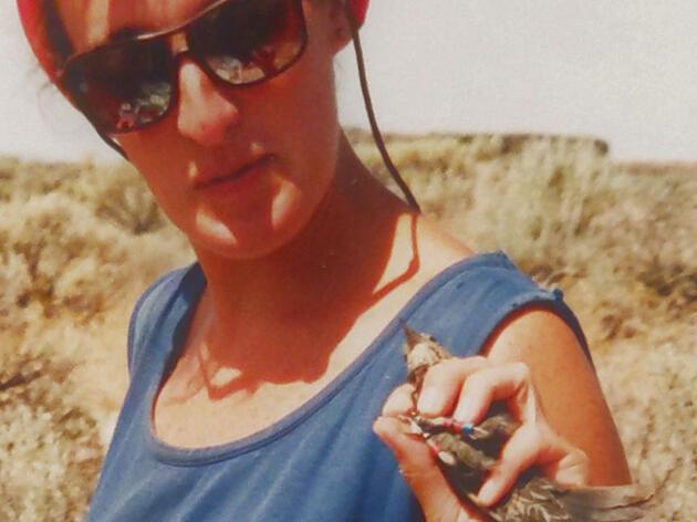 Elizabeth Gray bands a female Redwinged Blackbird during her graduate field studies.