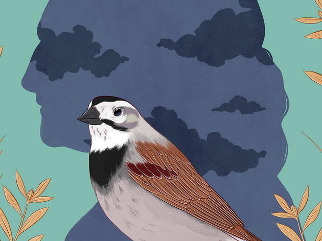 Birding and Conservation Groups Are Beginning to Grapple With Racist Histories