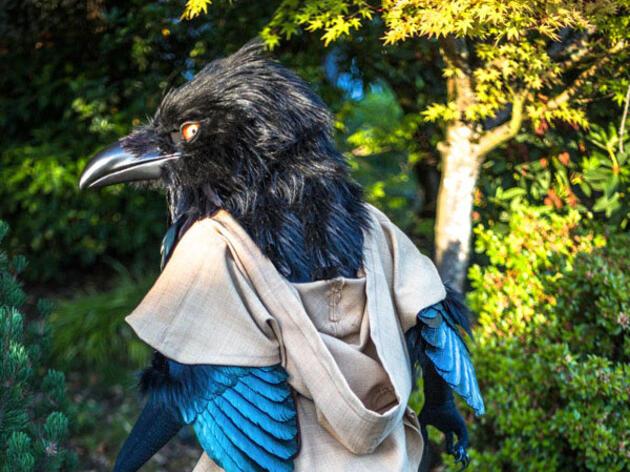 Inside the World of Elite Bird Costuming