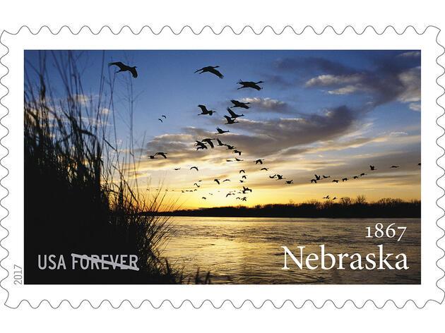 Gorgeous Sunset Shot of Sandhill Cranes Wins Spot on New USPS Stamp