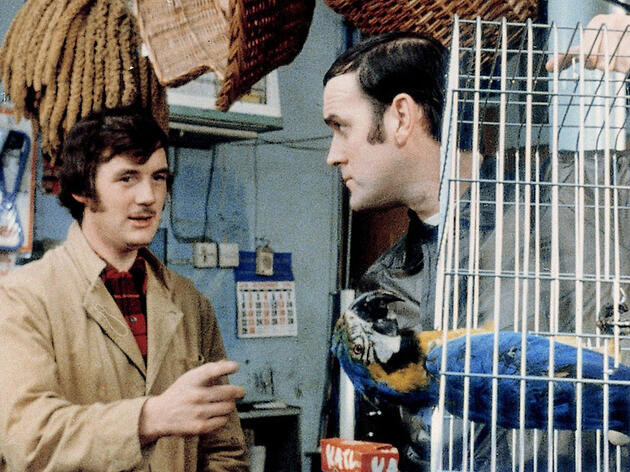 Monty Python's Life of Birds