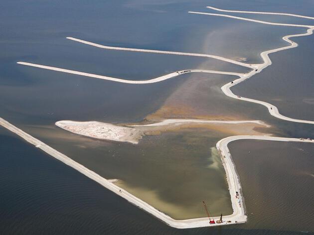 Cambios dramáticos en los niveles de agua de los Grandes Lagos hacen que la vida ahí sea difícil para las aves