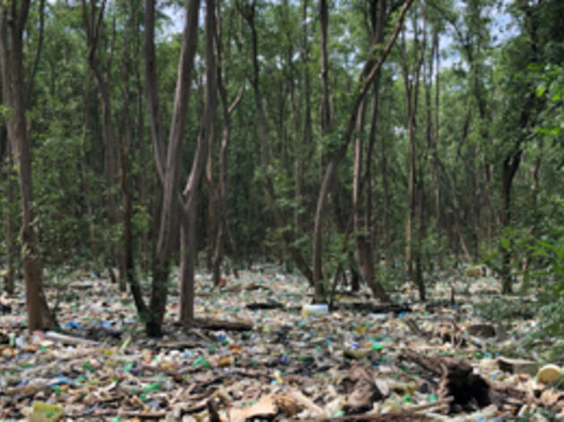 Panama Bans the Use of Plastic Bags