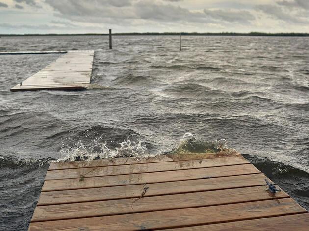 La lucha para salvar a Pine Island