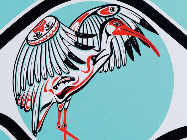 Reimagining the American White Ibis