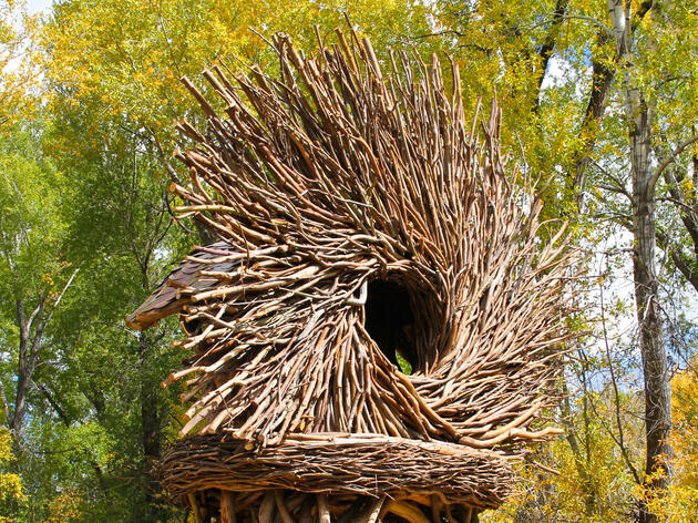 From Nuisance to Nest: This Artist Makes Shelters From Fallen Limbs and Trees