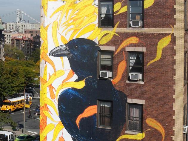 Fish Crow by Hitnes