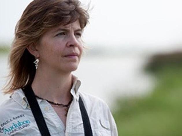 Audubon testifies for living Gulf resources