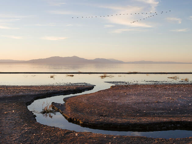 The Salton Sea has been shrinking for decades. Peter Bohler