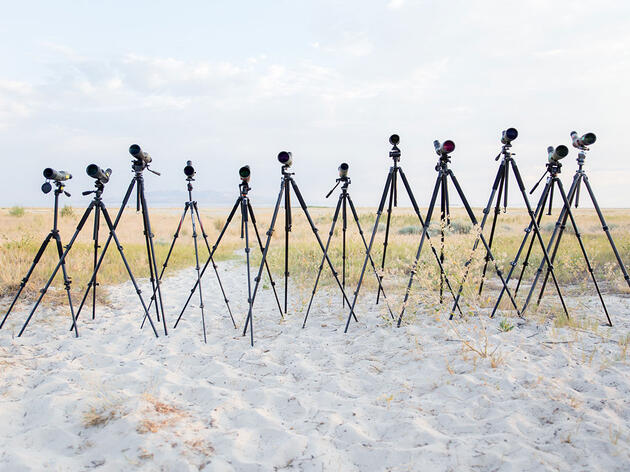 How to Choose Your Spotting Scope
