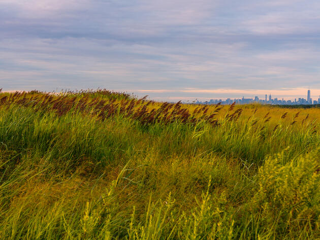 New York's Fresh Kills Landfill Gets an Epic Facelift