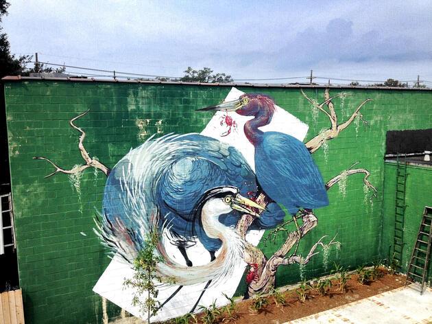 Hitnes Runs into Herons in New Orleans