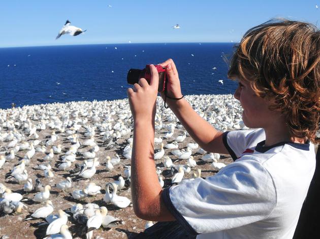 Inspire Children to Love Bird Photography