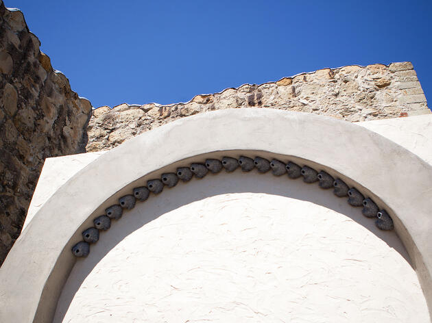 A Homecoming for the Legendary Swallows of Mission San Juan Capistrano?