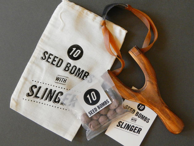 Grow a Garden with Seed Bombs