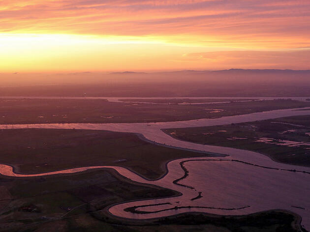 In California's Parched Central Valley, Habitat Restoration Lags Promises