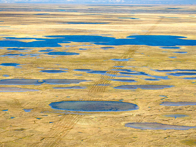 The Public Gets Just Two Weeks to Weigh In on Seismic Testing in the Arctic Refuge