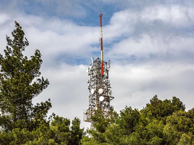 No, 5G Radio Waves Do Not Kill Birds