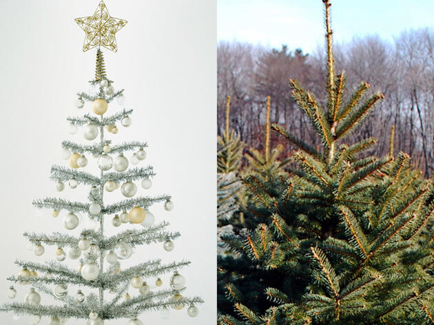 Should You Buy a Real or Fake Christmas Tree?