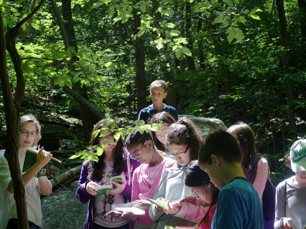 Learning to Love Nature at New York City's Field Station