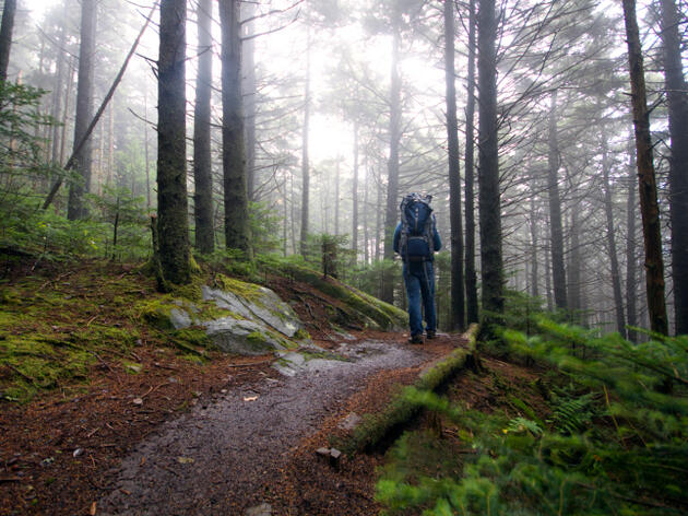 Two Months on the Appalachian Trail
