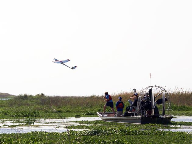 Drones Help Track Nests