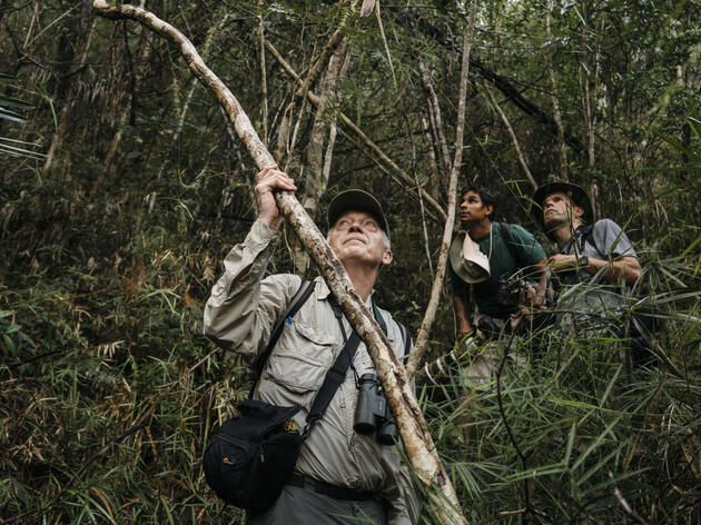 Martjan Lammertink and Tim Gallagher hike the northern edge of Humbolt National Park with their Cuban guide El Indio. Greg Kahn