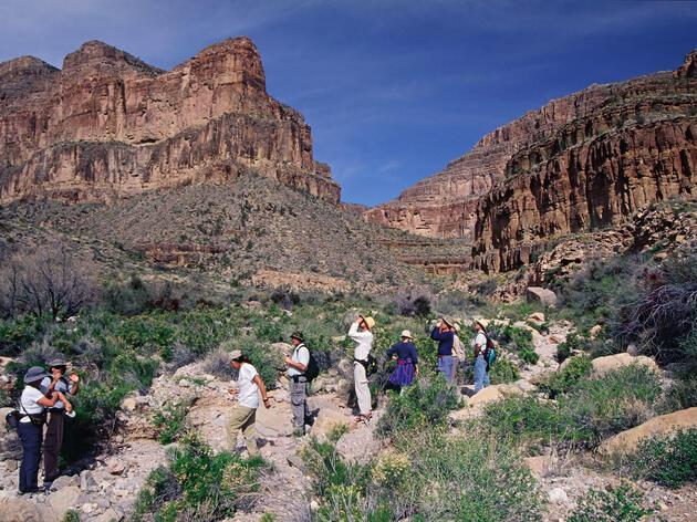 West Grand Canyon in Arizona. Jim Cole/Alamy