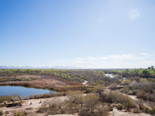 A view of the Yuma East Wetlands restoration project. Dominic Arenas/Audubon