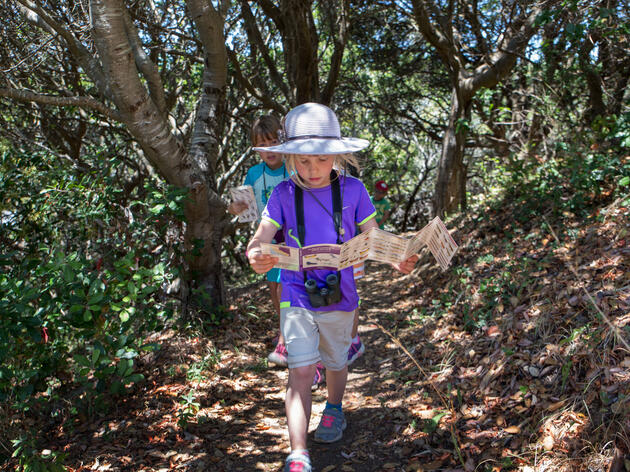 Audubon Camps