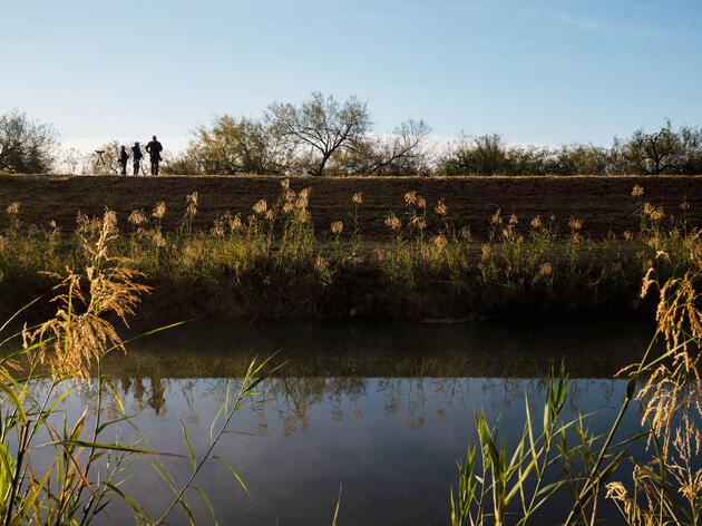 La inminente construcción del muro amenaza el conteo de aves en la frontera