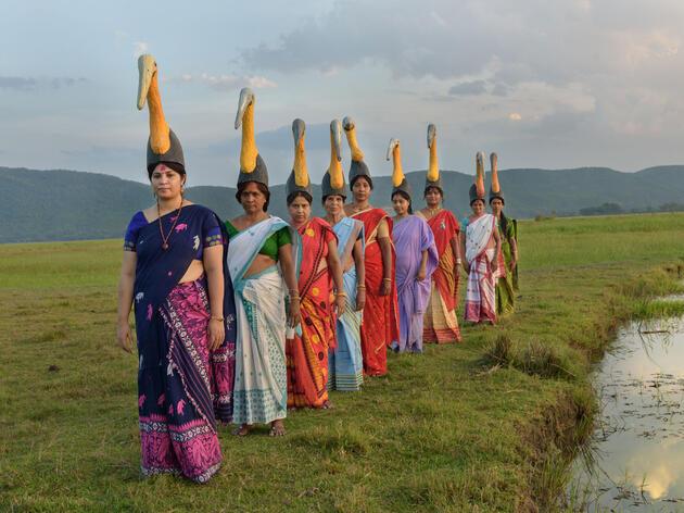 Purnima Barman (frente) junto a otras mujeres en Assam, India, cantaron canciones tradicionales, adaptadas con letras de cigüeñas, y bailaron con grandes tocados en un reciente baby shower.
