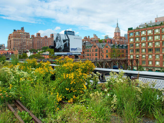 New York City's High Line Park features a variety of native plants to attract more bugs and birds. Yaacov Dagan/Alamy