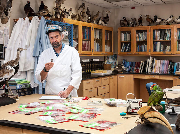 Behind the Scenes With the World's Top Feather Detective