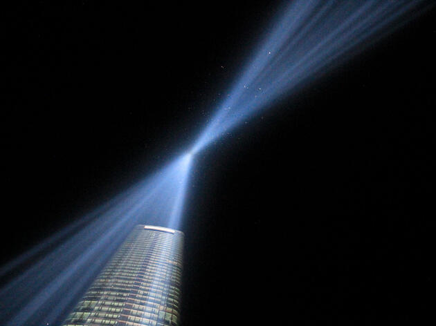 Recent findings prove that birds flying in the 9/11 tribute lights in New York City are incidental. This year, more than 4,000 individuals were counted over a 10-hour period by NYC Audubon volunteers. Christine Lin/Audubon