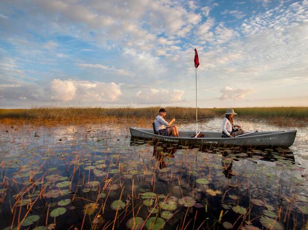 Canoas navegan a través de un humedal en los Everglades centrales.