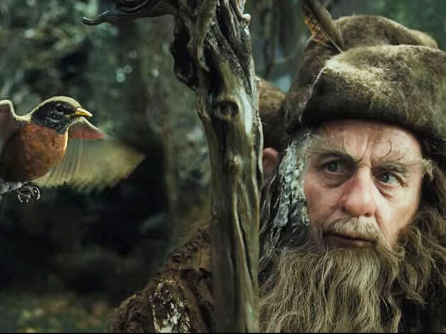 Why That American Robin Cameo in 'The Hobbit' Wasn't an Error