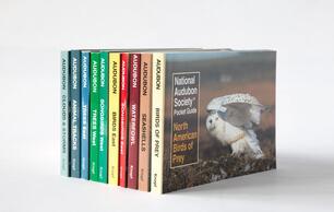Audubon Pocket Guides