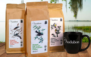 Coffee Produced in Bird-Friendly Habitats