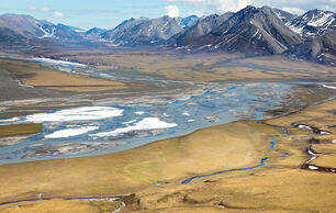 Amid Contradiction and Controversy, Plans Proceed for Arctic Refuge Lease Sale